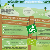 Infographics - French organic food sector: how can it increase scale without abandoning its original principles?