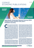 Asia Pacific corporate payment survey 2020