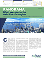 What we see in the Asia Pacific region